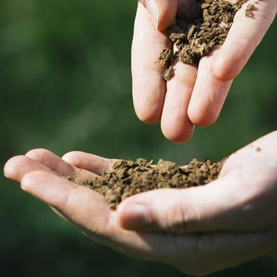 養液土耕栽培用肥料