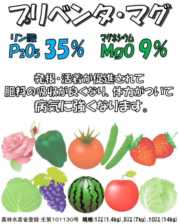 プリベンタ・マグ 発根・活着が促進されて肥料の吸収が良くなり、体力がついて病気に強くなります。