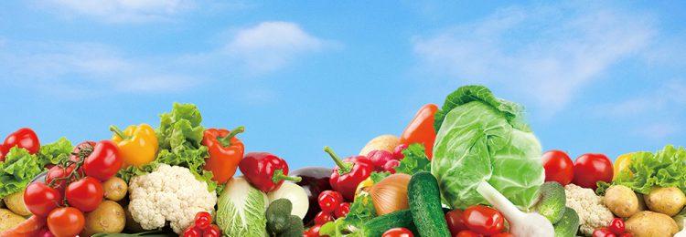 野菜ビジュアル